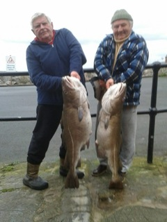 watchet cod